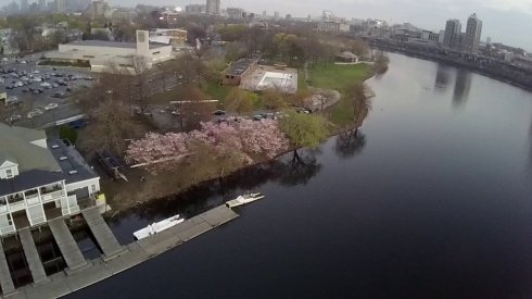 Aerial view of the park courtesy of Christopher Schmidt