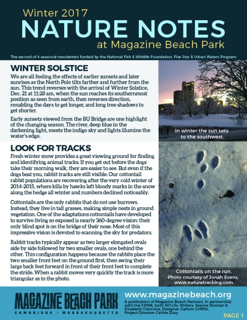 MB Winter Newsletter FINAL 72 ppi-01