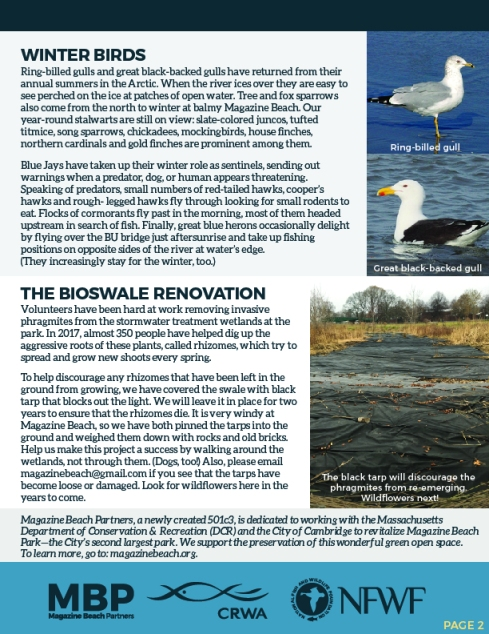MB Winter Newsletter FINAL 72 ppi-02